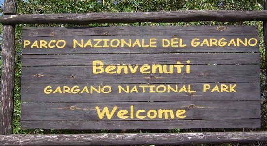 <!-- itinerari -->Gargano National Park and Umbra Forest